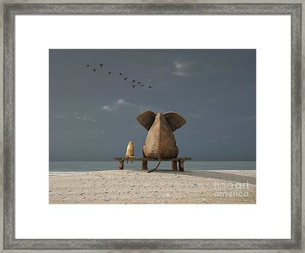 Elephant And Dog Sit On A Beach Framed Print