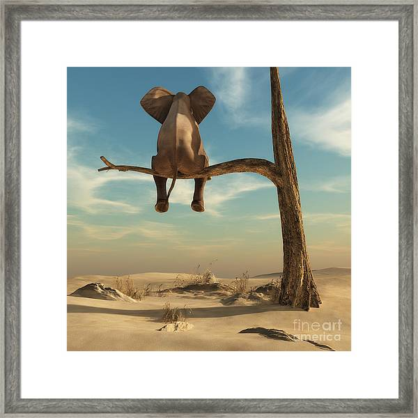 Elephant Stands On Thin Branch Of Framed Print