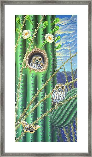Elf Owls In The Saguaro Cactus Framed Print