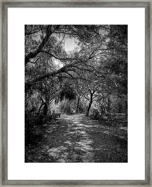Emerson Walk Framed Print