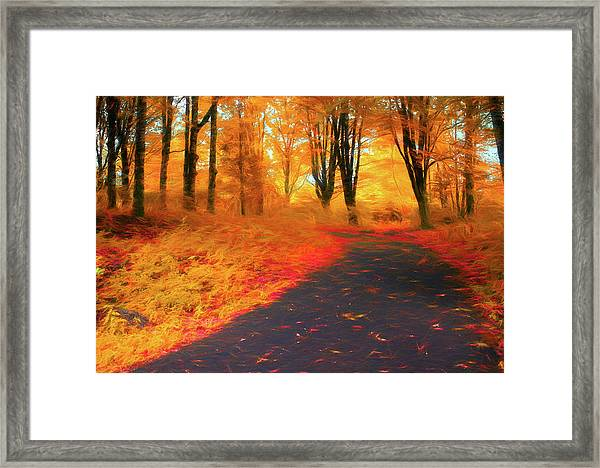 Emmaus Community Park Path - Colors Of Fall Framed Print