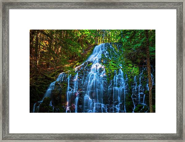 Framed Print featuring the photograph Enchanting Ramona Falls by Dee Browning