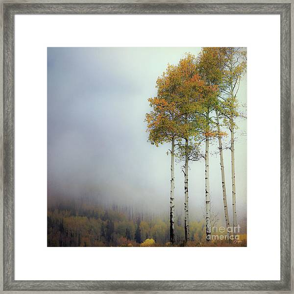 Ethereal Autumn Framed Print
