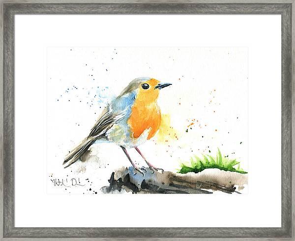 European Robin Framed Print