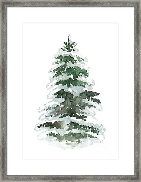 Evergreen Tree Covered In Snow Framed Print