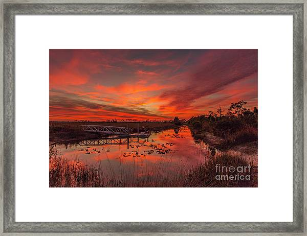 Framed Print featuring the photograph Explosive Sunset At Pine Glades by Tom Claud