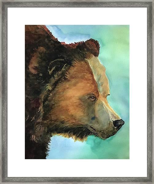 Face To Face Bear Framed Print