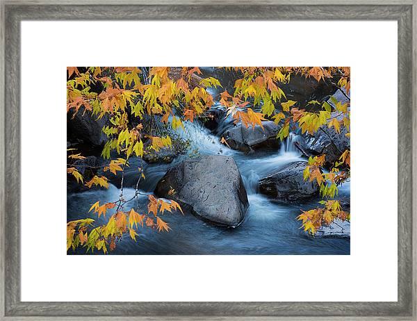 Fall Colors At Slide Rock Arizona Framed Print
