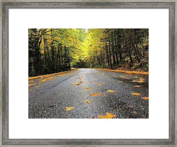 Fall Drive Framed Print