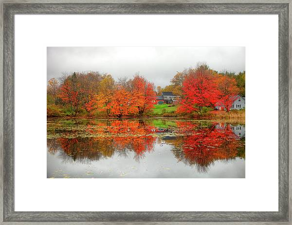 Fall Foliage In Rural New Hampshire Framed Print