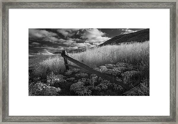 Fallen Fence  Framed Print