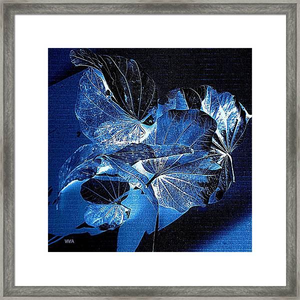 Fallen Leaves At Midnight Framed Print