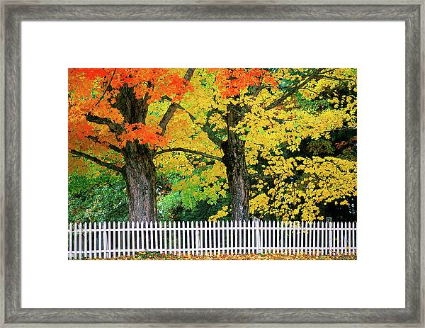 Falls Colors In New Hampshire Framed Print