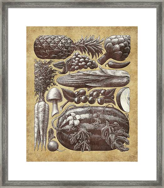 Framed Print featuring the drawing Farmer's Market - Sepia by Clint Hansen