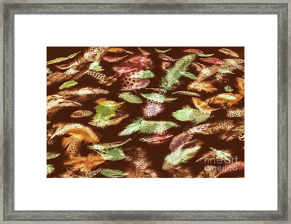 Feathery Flights Framed Print