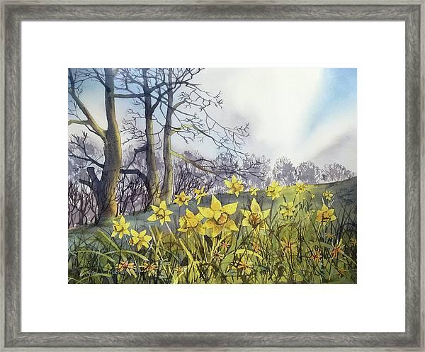 Field Of Hope At Burton Agnes Framed Print
