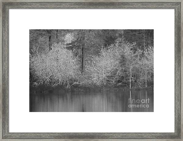 Framed Print featuring the photograph Filter Series 200b by Jeni Gray
