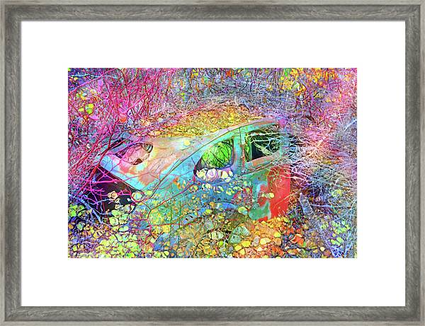 Finding The Beauty In Being Left Behind Framed Print