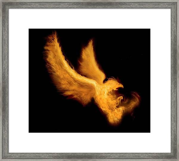 Fire Bird Framed Print by -asi