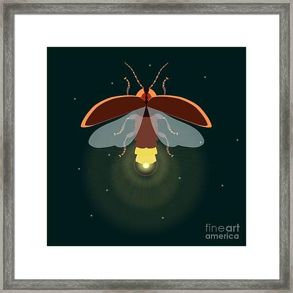 Firefly Design Template. Lightning Bug Framed Print