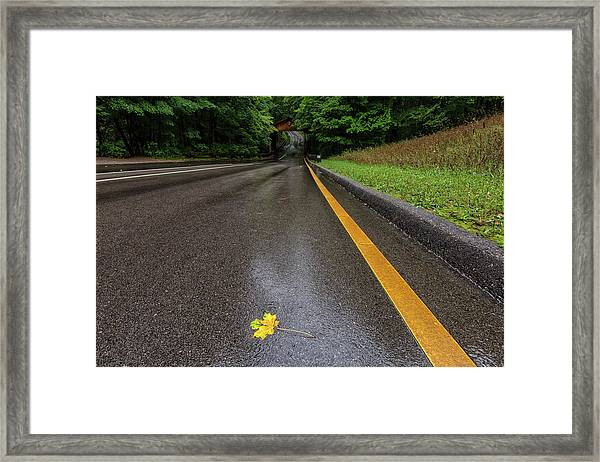 First Sign Of Autumn Framed Print