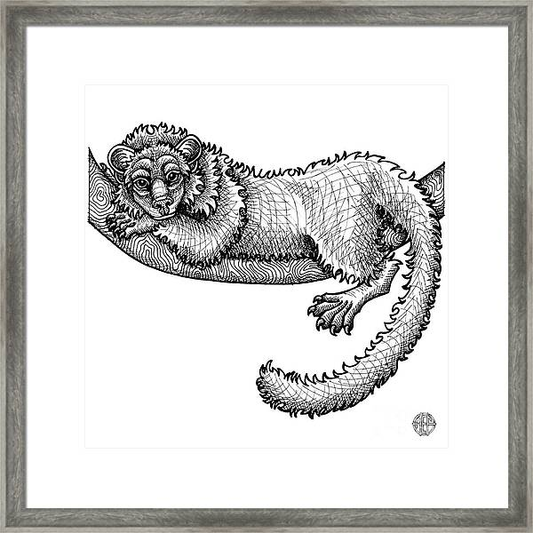 Framed Print featuring the drawing Fisher by Amy E Fraser