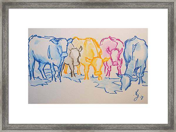 Five Cows Five Colors Watercolor Line Drawing Framed Print
