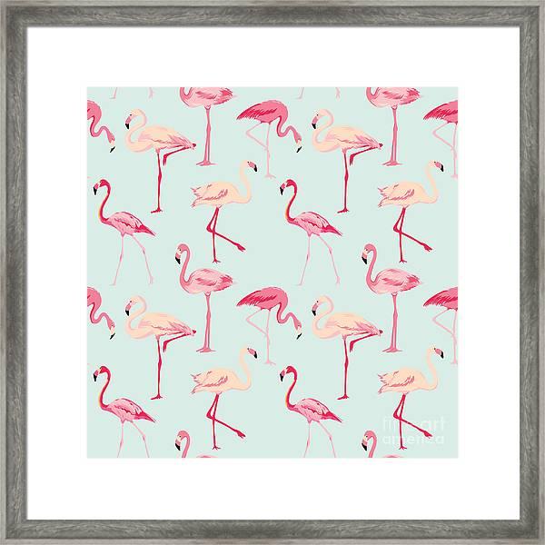 Flamingo Bird Background - Retro Framed Print