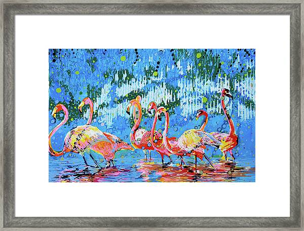 Flamingo Pat Party Framed Print