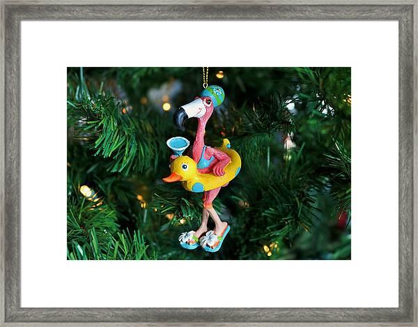 Flamingo Swimmer Framed Print