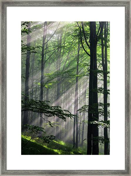 Fleeting Beams Framed Print