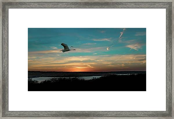 Flight To The Lake Framed Print