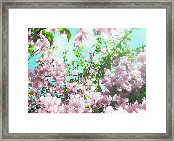 Floral Dreams V Framed Print