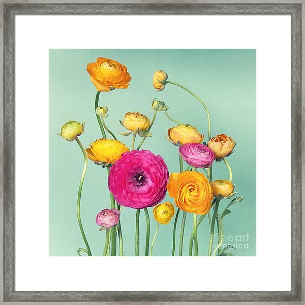 Flower Arrangement Of Colorful Framed Print