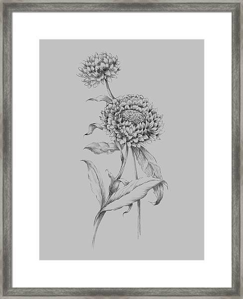 Flower Drawing 3 Framed Print