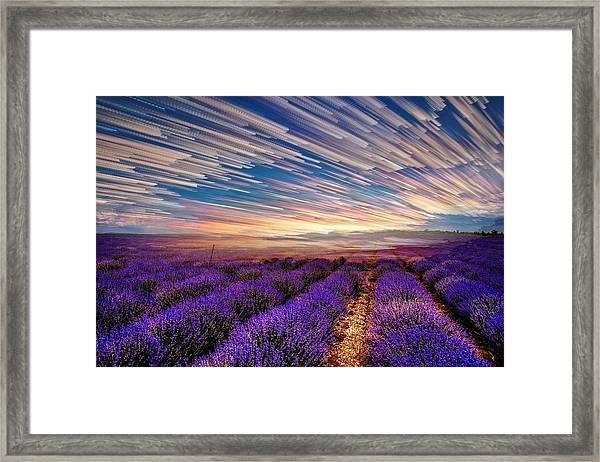 Flower Landscape Framed Print