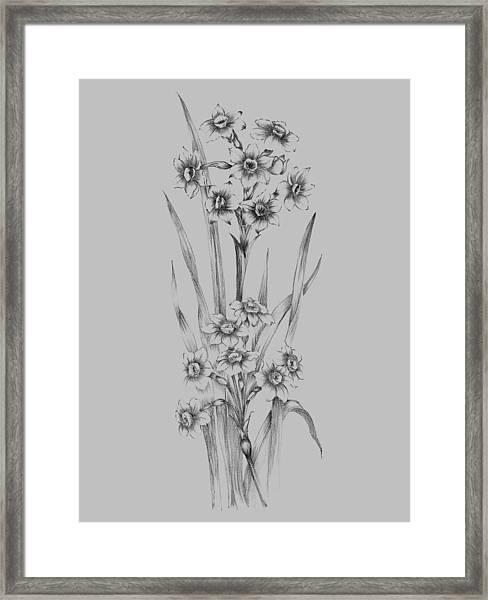 Flower Sketch I Framed Print