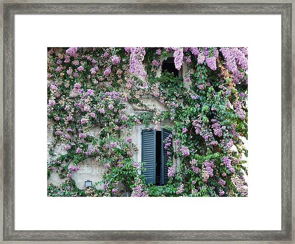Flowered Window In Sirmione Framed Print