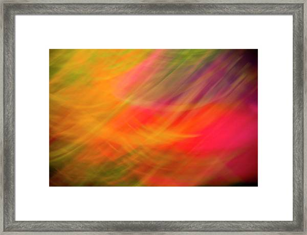 Flowers In Abstract Framed Print