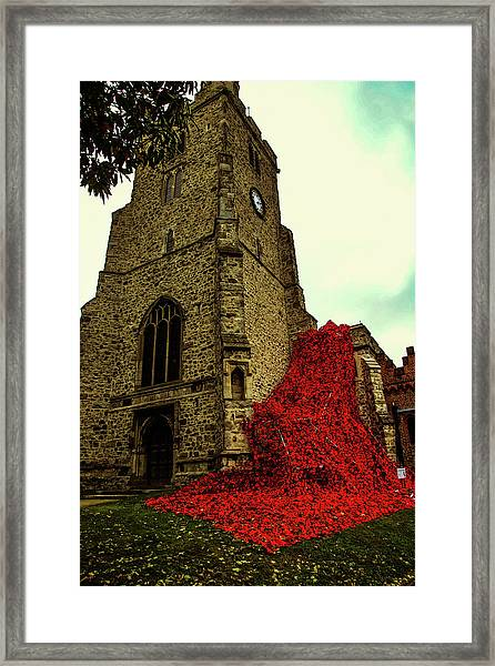 Flowing Poppies Framed Print