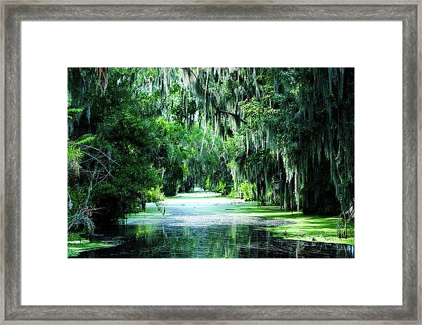Flush With Green Framed Print