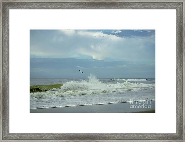 Fly Above The Surf Framed Print