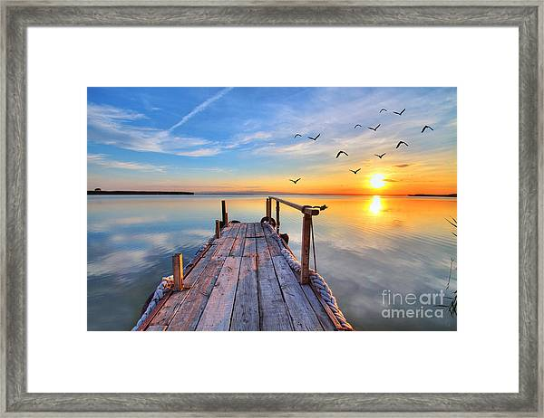 Flying By The Lake Framed Print by Kesipun