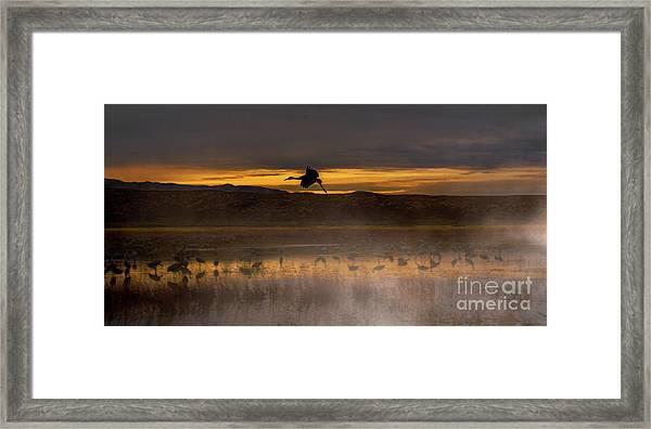 Flying Over Crane Pond Framed Print