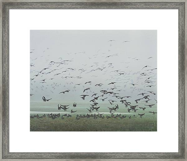Foggy Arrival Framed Print