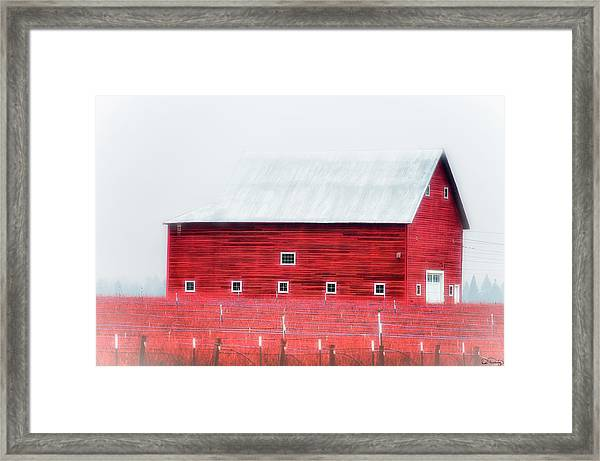 Framed Print featuring the photograph Foggy Country Scene by Dee Browning