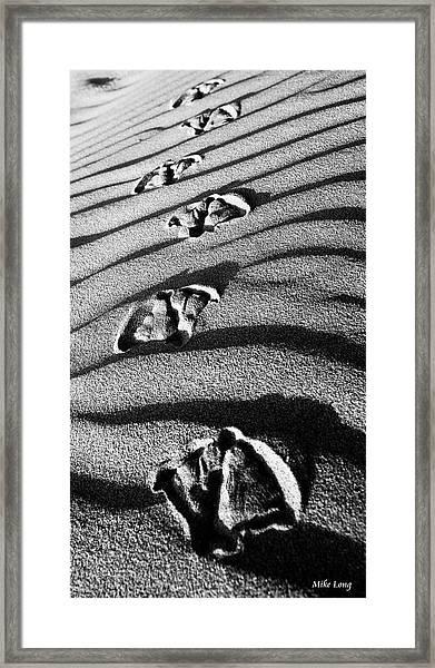 Follow Me Framed Print