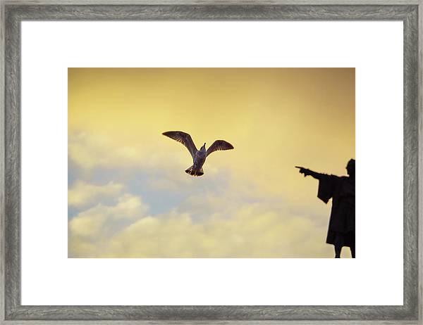 Follow This Bird -- Columbus Discovering America Framed Print