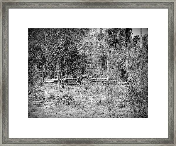 Footbridge To Nowhere Framed Print