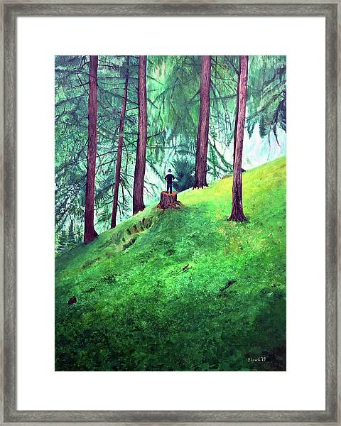 Forest Through The Trees Framed Print